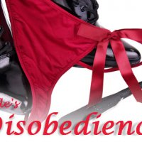 """A Lesson In """"Disobedience"""""""