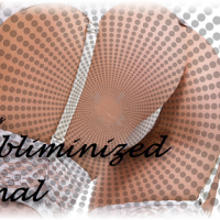 Subliminized - Final Focus