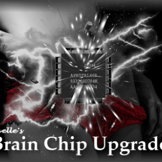 Brain Chip Upgrade 2--Mystery