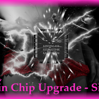 Brain Chip - Implant Upgrade-Sissy 1