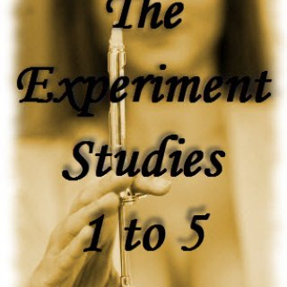 The Experiment Series