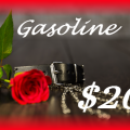 Assignment - Gasoline for My Car