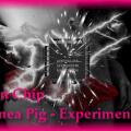 Brain Chip Upgrade-Guinea Pig 2