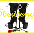 Obedience Saving Assignment