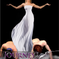 The Journey To Enslavement Series