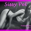 Tranceformation - Sissy Slave Pet
